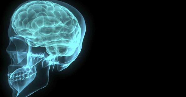 24 Brain Facts to Blow Your Mind